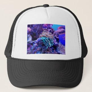 Boné coral-1053837