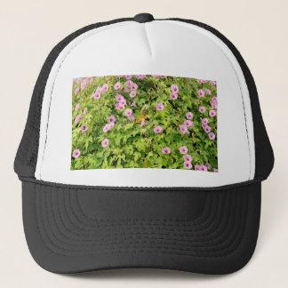 Boné Corriolas cor-de-rosa Bush