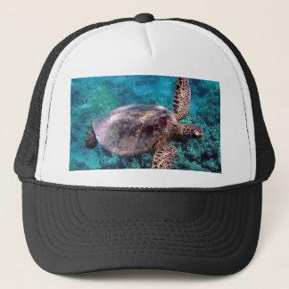 Boné da tartaruga de Havaí Honu