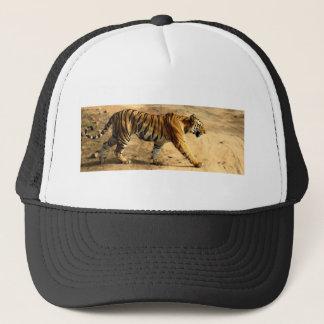 Boné Desengaço de Tigres dos alugueres
