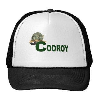 Boné - DG do gambá de Cooroy