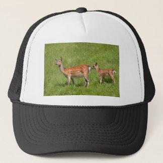 Boné Dois cervos de fallow na grama