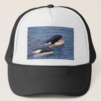 Boné Duas baleias de assassino