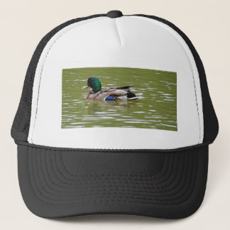 Boné duck3