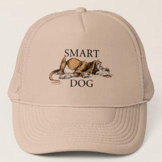 Boné esperto do cão