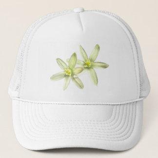 Boné Estrela do chapéu de Bethlehem