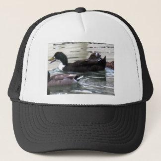 Boné Eu amo patos