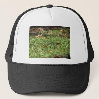 Boné Feche acima do campo de grama verde e das folhas