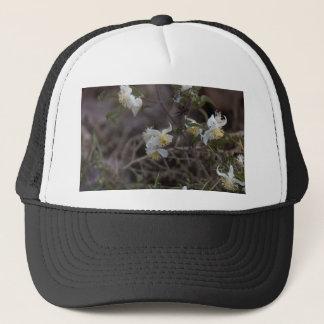 Boné Flores da alegria do viajante (brachiata do