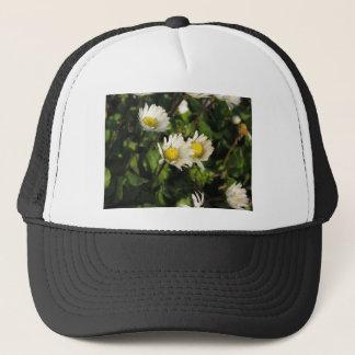 Boné Flores da margarida branca no fundo verde