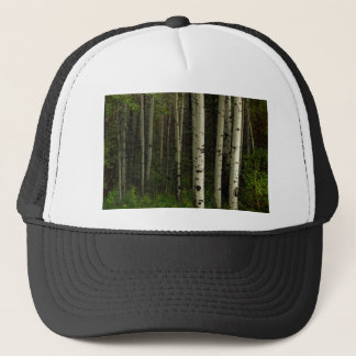 Boné Floresta branca