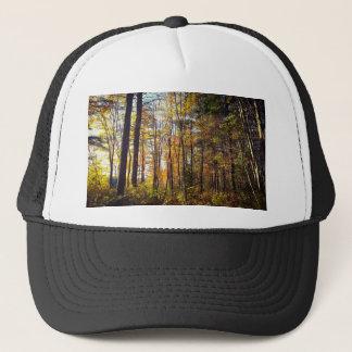Boné Floresta do outono de New Hampshire