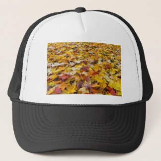 Boné Folhas caídas da cor da queda nos parques mmoídos
