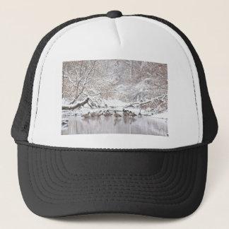 Boné Gansos na neve