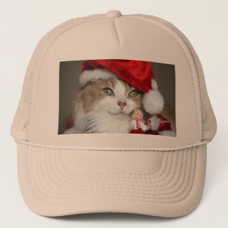 Boné Gato do papai noel - gato do Natal - gatinhos
