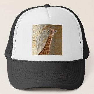 Boné Girafa perto do penhasco