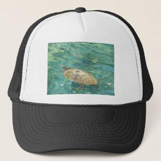 Boné grande natação da tartaruga do rio