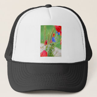 Boné Grupo de papoilas, de cornflowers e das orelhas