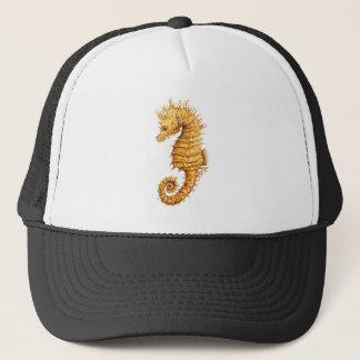 Boné Hipocampo do hipocampo do cavalo de mar