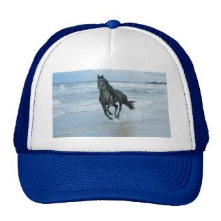 Boné imagem cavalo