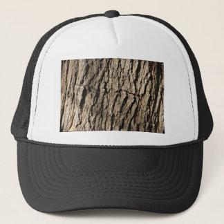 Boné Lado da árvore