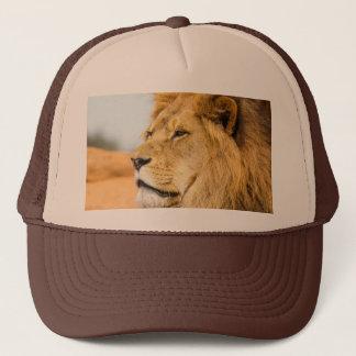 Boné Leão grande que olha longe
