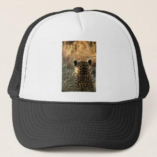 Boné Leopardo que olha fora na distância