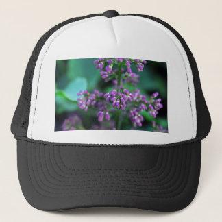 Boné Lilacs do amanhecer