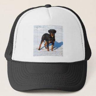Boné Lobo Rottweiler