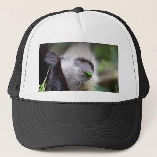 Boné Macaco africano