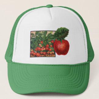 Boné Morangos do vintage, plantas de morango em uma
