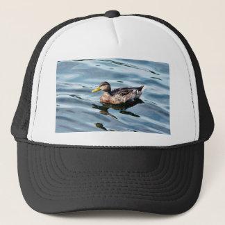 Boné Natação fêmea do pato do pato selvagem