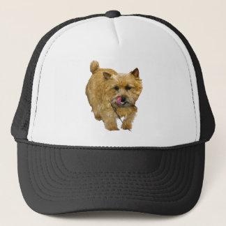Boné Norwich Terrier