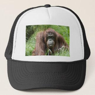 Boné Orangotango
