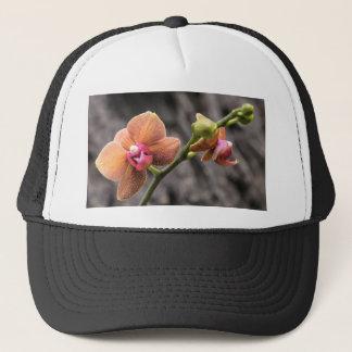 Boné Orquídea alaranjada