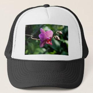 Boné Orquídea mágica