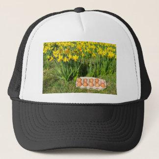 Boné Ovos na caixa na grama com daffodils amarelos
