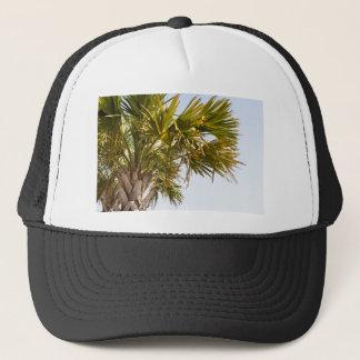 Boné Palmeira da costa leste Myrtle Beach famoso