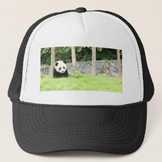 Boné Panda do bebê