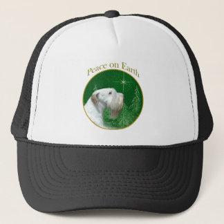 Boné Paz de Sealyham Terrier na terra