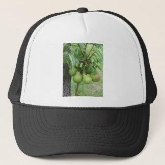 Boné Peras verdes que penduram em uma árvore de pera