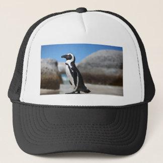 Boné Pinguim africano