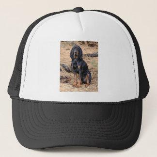 Boné Preto e cão do Coonhound de Tan