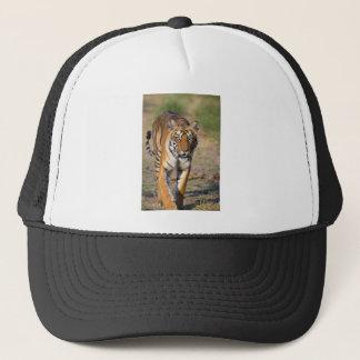 Boné Rapina de desengaço do Tigress fêmea