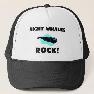 Boné Rocha das baleias direitas
