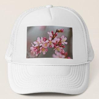 Boné Rosa contra as flores de cerejeira cinzentas de um