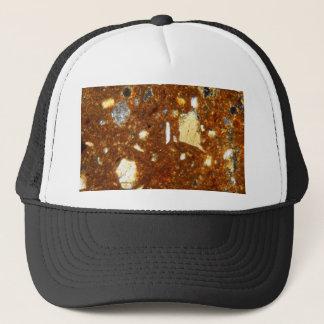 Boné Seção fina de um tijolo sob o microscópio