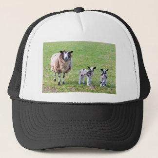 Boné Sira de mãe a carneiros com os dois cordeiros