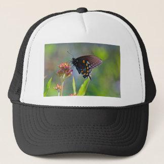 Boné Spicebush Swallowtail II