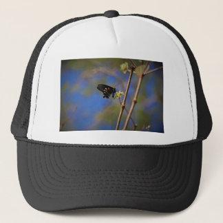 Boné Spicebush Swallowtail mim